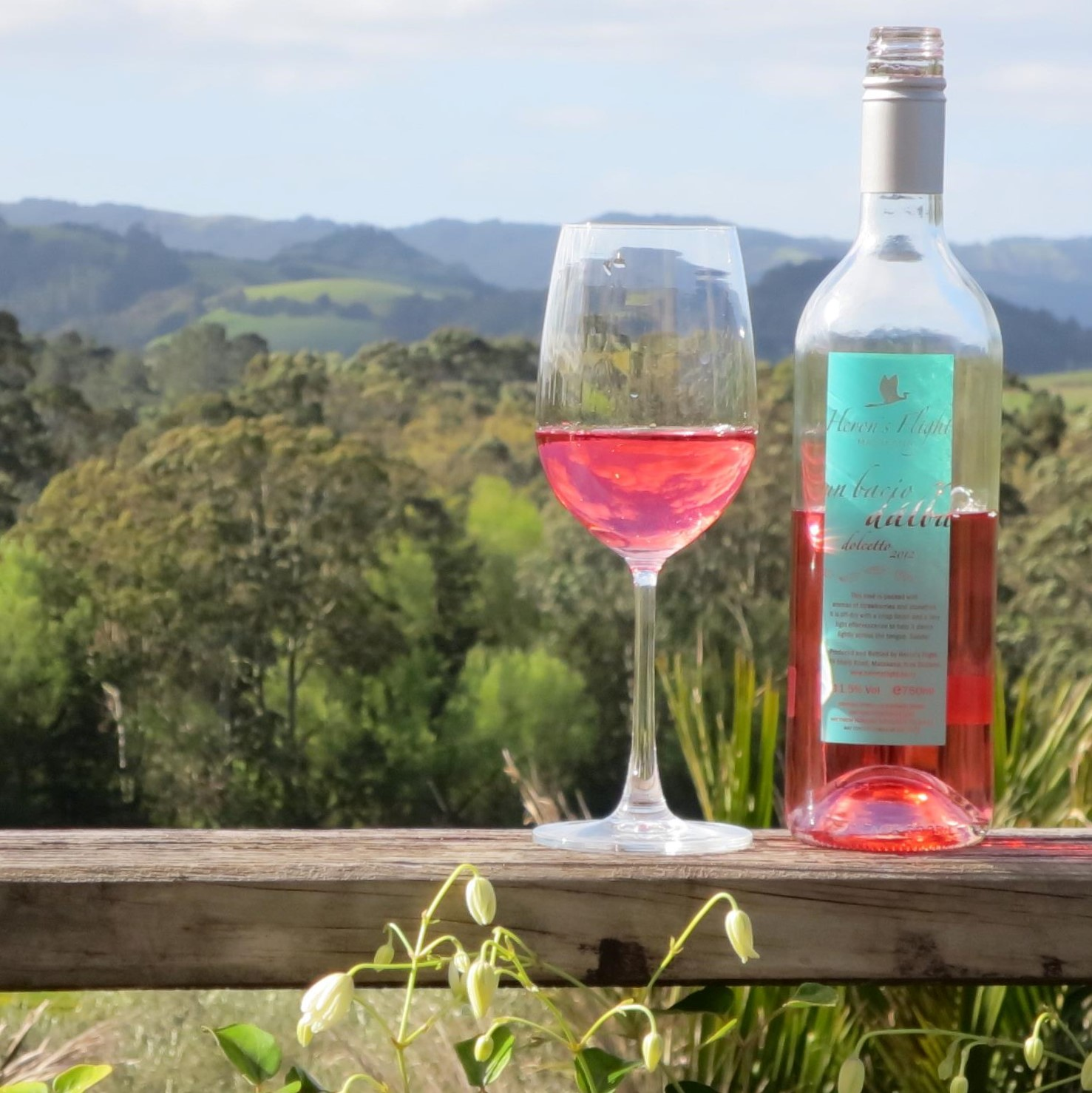 Herons Flight vineyard matakana – Copy
