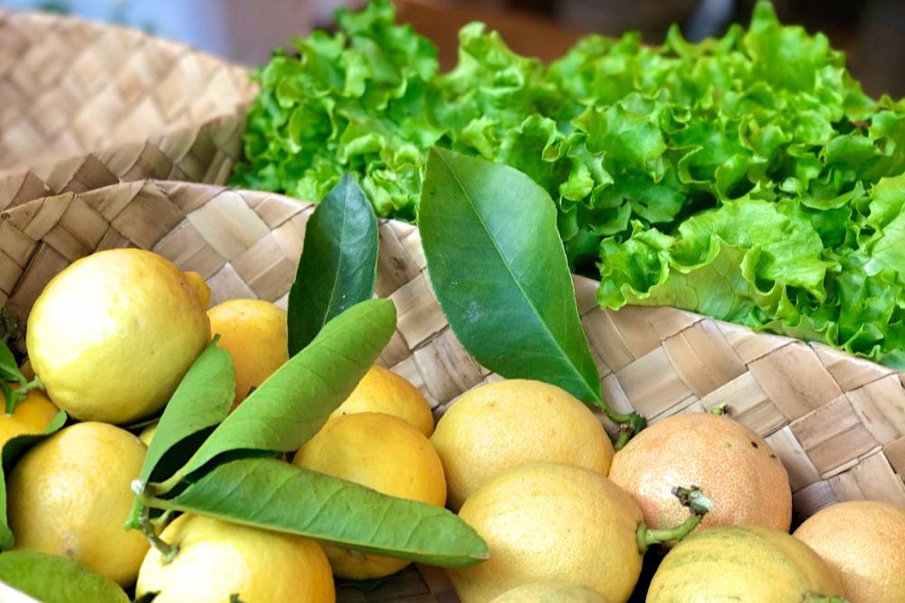 Matakana farmers markets lemons